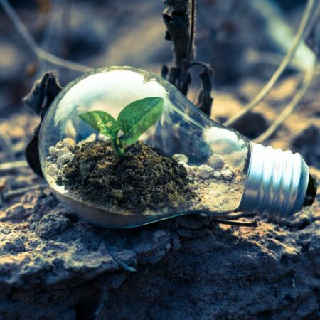 Das neue EU-Energielabel für Lichtquellen erklärt